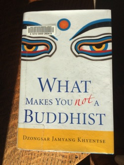 DJK WhatMakesYouNotBuddhist